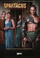 plakat - Spartakus: Bogowie areny (2011)