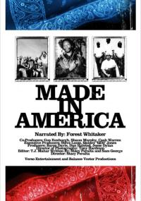Made in America (2008) plakat