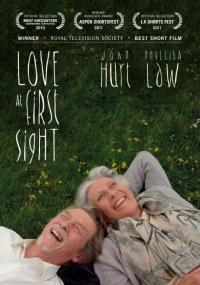 Love at First Sight (2010) plakat