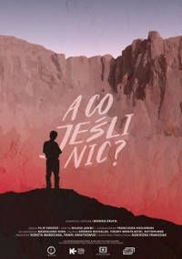 A co jeśli nic? (2020) plakat