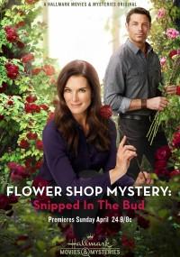 Tajemnice kwiaciarni: Bukiet