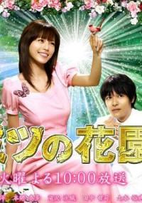 Himitsu no Hanazono (2007) plakat