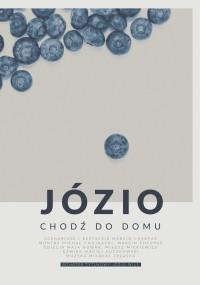 Józio, chodź do domu (2016) plakat