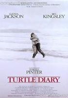 Dziennik żółwia
