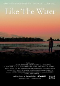 Like the Water (2012) plakat