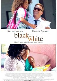 Black or White (2014) plakat