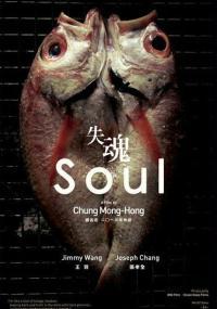 Zagubiona dusza (2013) plakat