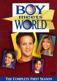 Chłopiec poznaje świat (1993) plakat