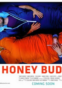 Buddymoon (2016) plakat
