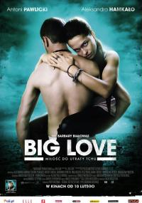 Big Love (2012) plakat