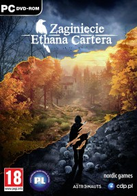 Zaginięcie Ethana Cartera (2014) plakat