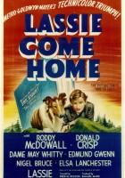 Lassie wróć