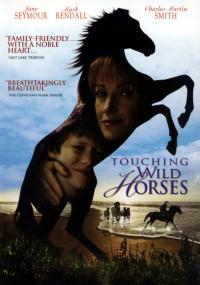 Jak dzikie konie (2002) plakat