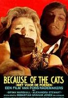 Z powodu kotów