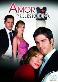 Amor en Custodia (2009) plakat
