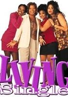 Living Single (1993) plakat
