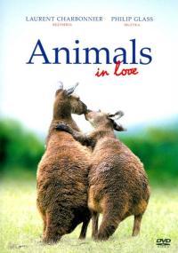 Zakochane zwierzęta (2007) plakat