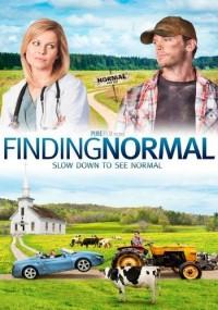 Finding Normal (2013) plakat