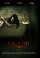 Haunted Echoes (2008) plakat