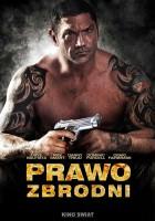 plakat - Prawo zbrodni (2011)