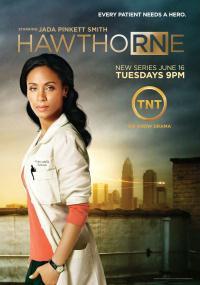 Siostra Hawthorne (2009) plakat