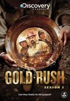 plakat - Gorączka złota (2010)