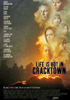 plakat - Life Is Hot in Cracktown (2009)
