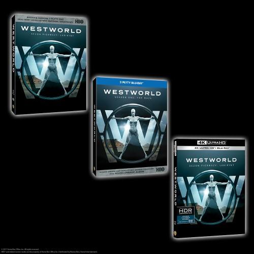 WESTWORLD_SEZON 1_ PLANSZA DVD_BD_4K.png