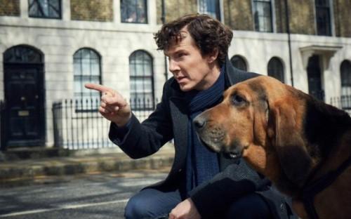 SherlockAndPooch.jpg