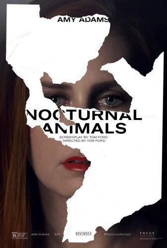 Nocturnal-animals-Amy-Adama-RGB_F3.0.jpg