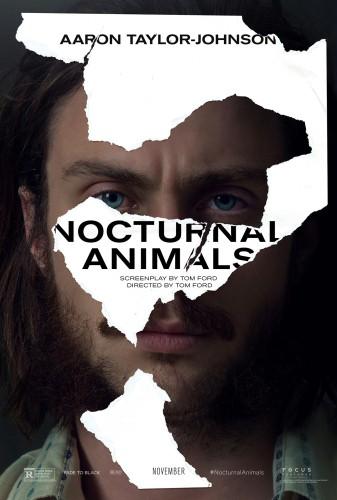 Nocturnal-animals-_RGB_F3.0.jpg