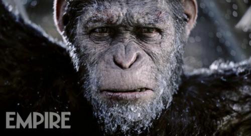 apes-628-1.jpg