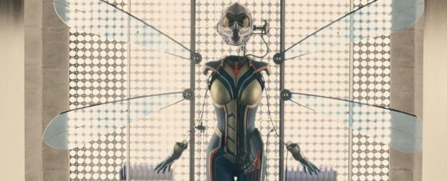 Ant-Man-Wasp-Costume-MCU.jpg