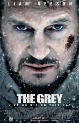 grey-poster-large.jpg