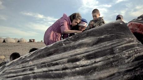 """Kadr z video 17. MDAG: """"Wieloryb z Lorino"""""""